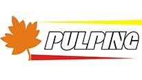پالپینگ